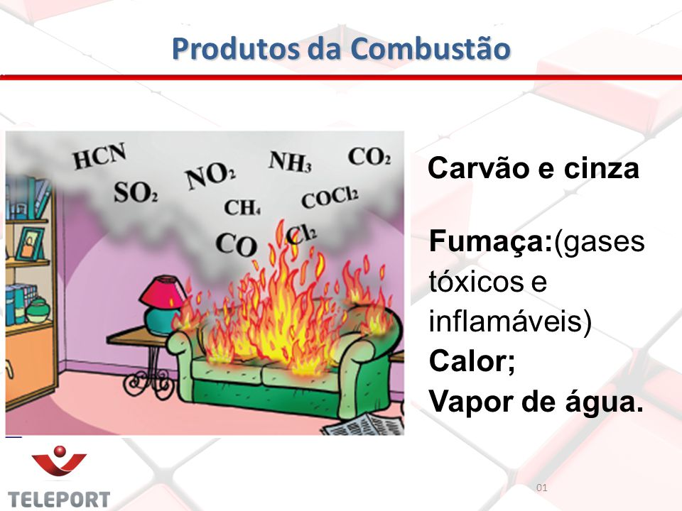 Produtos da Combustão Carvão e cinza