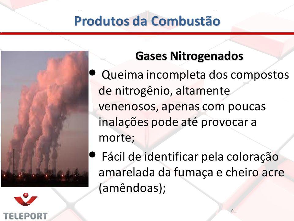 Produtos da Combustão Gases Nitrogenados