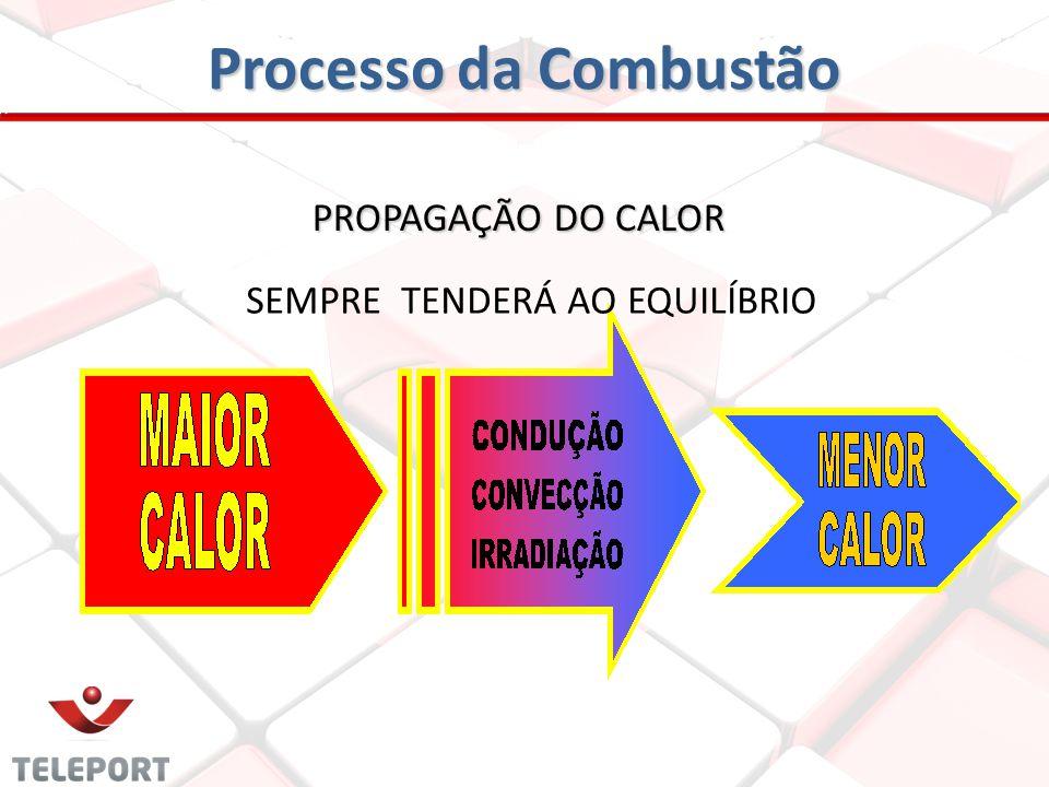 Processo da Combustão PROPAGAÇÃO DO CALOR SEMPRE TENDERÁ AO EQUILÍBRIO