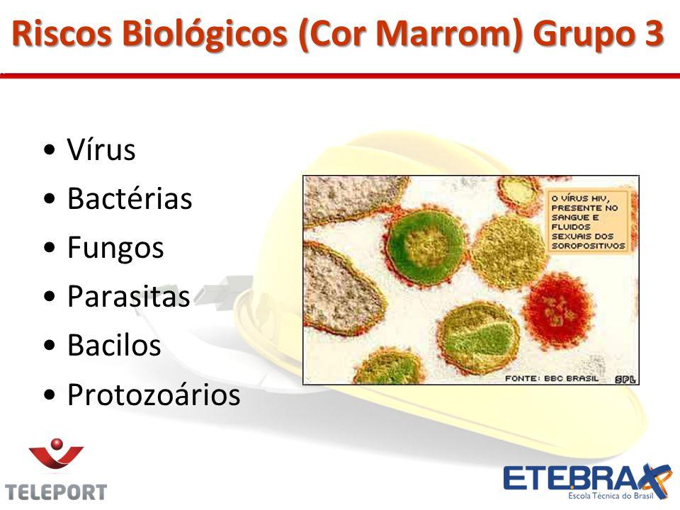 Riscos Biológicos (Cor Marrom) Grupo 3
