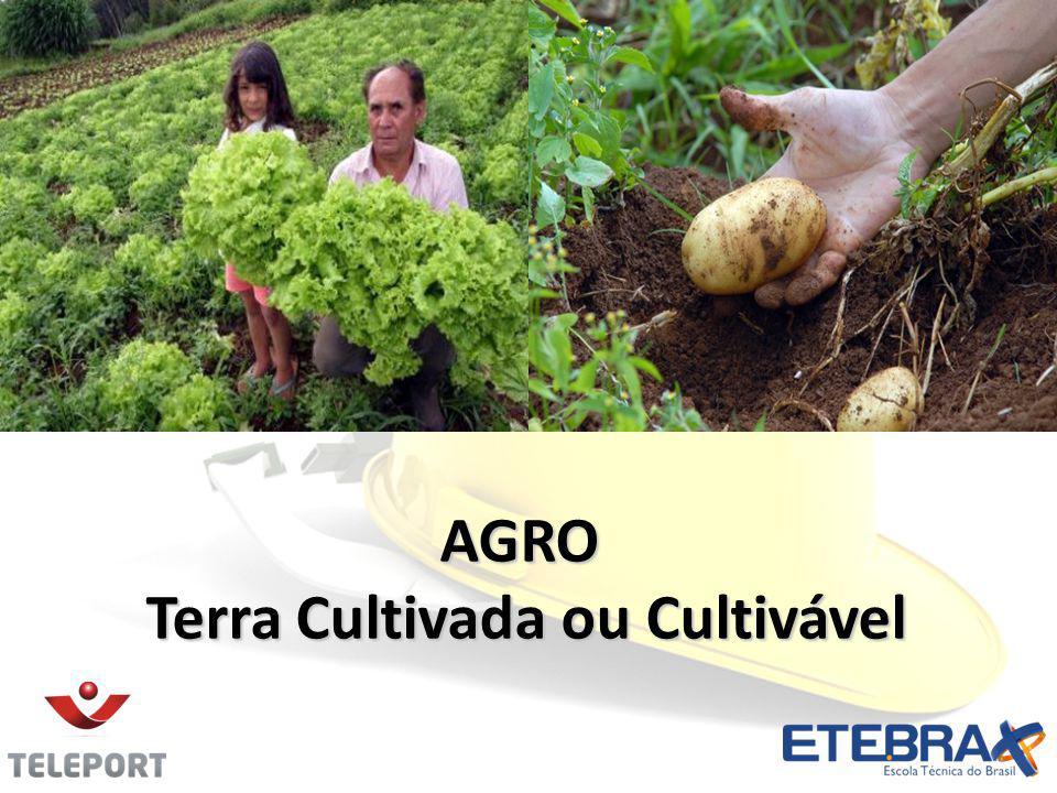 Terra Cultivada ou Cultivável