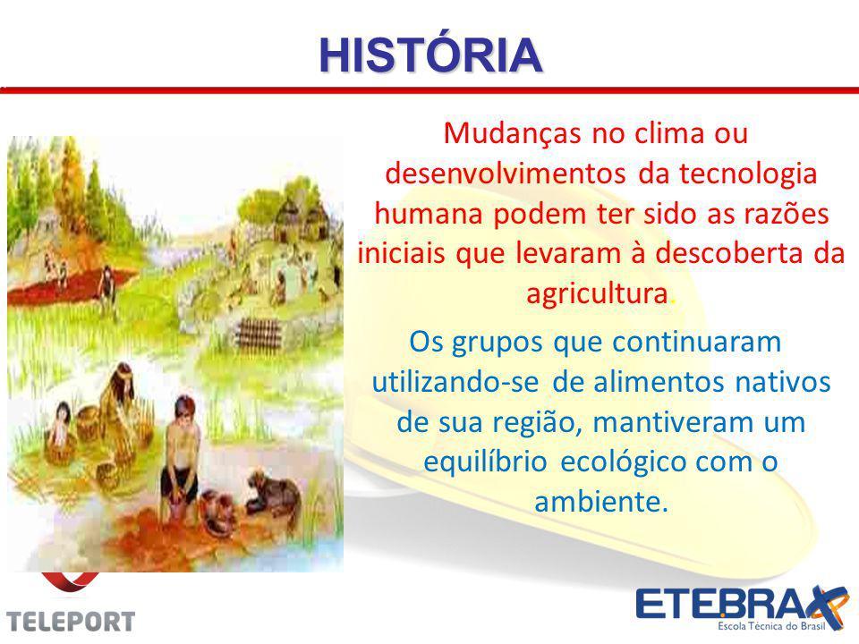 HISTÓRIA Mudanças no clima ou desenvolvimentos da tecnologia humana podem ter sido as razões iniciais que levaram à descoberta da agricultura.