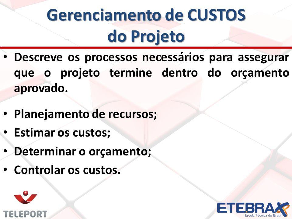 Gerenciamento de CUSTOS do Projeto