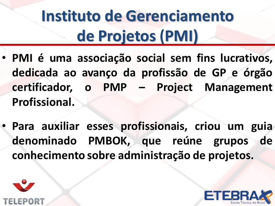 Instituto de Gerenciamento de Projetos (PMI)