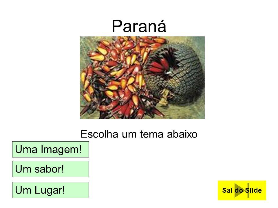 Paraná Escolha um tema abaixo Uma Imagem! Um sabor! Um Lugar!