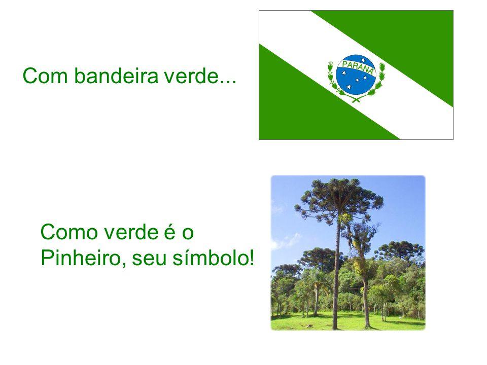 Com bandeira verde... Como verde é o Pinheiro, seu símbolo!