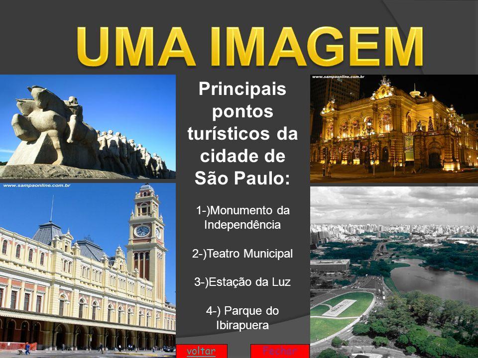 Principais pontos turísticos da cidade de São Paulo: