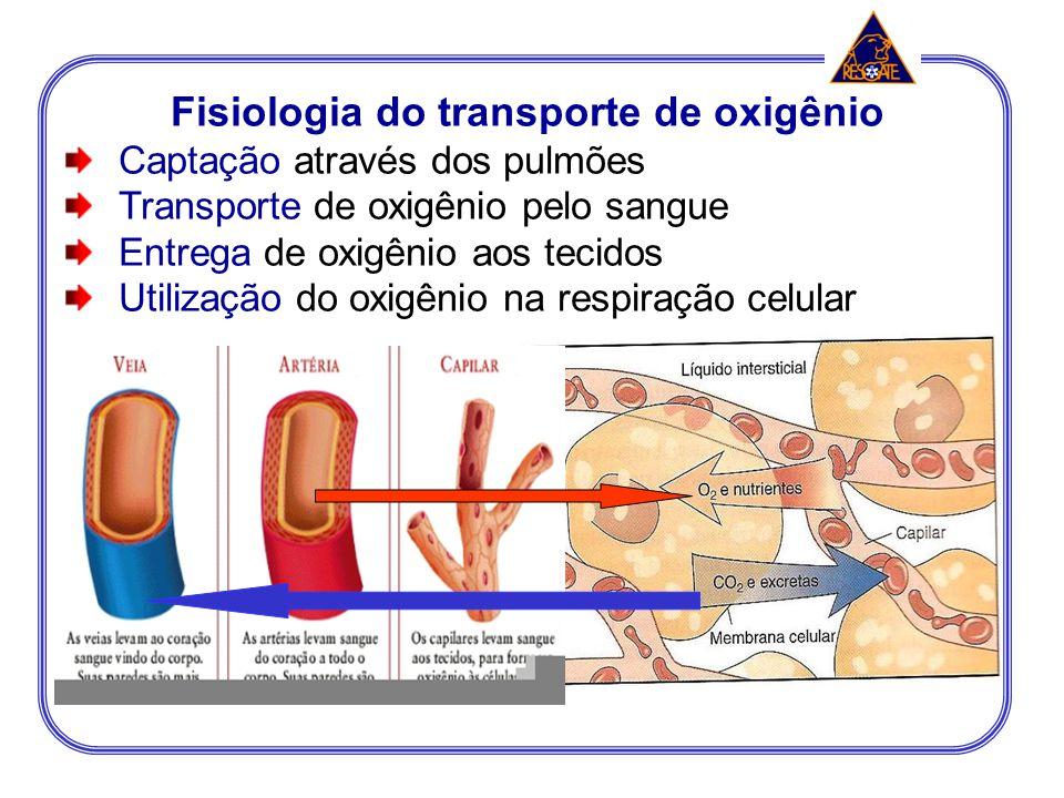 Fisiologia do transporte de oxigênio