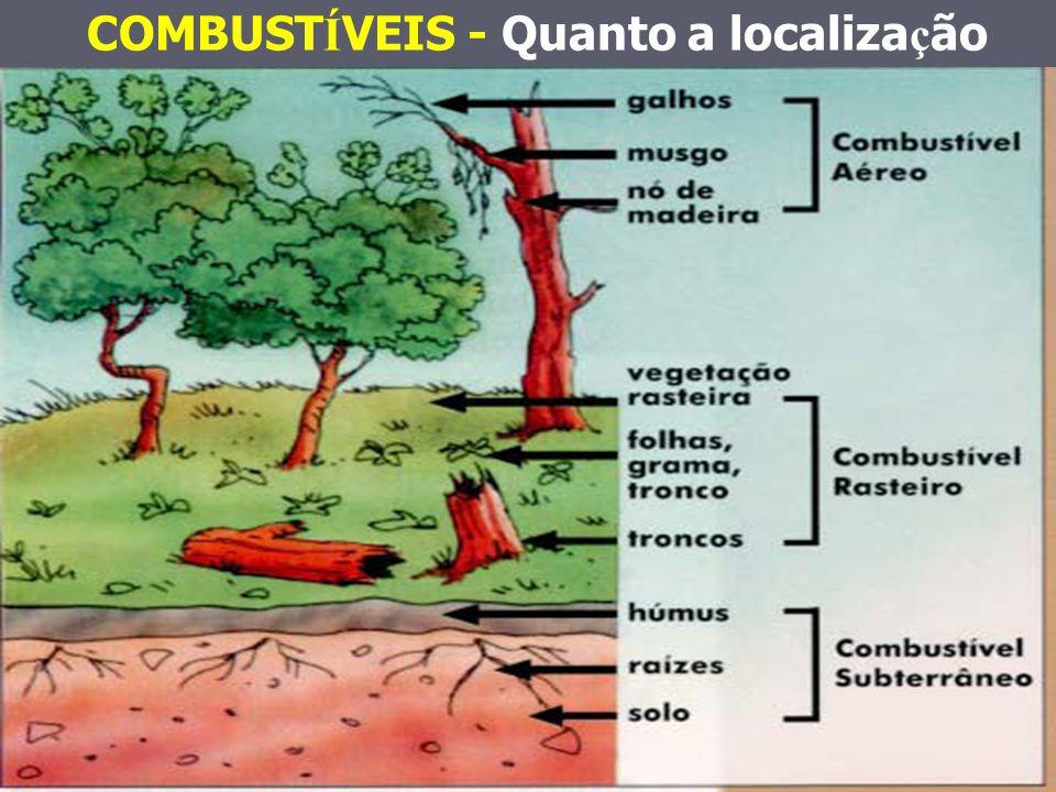 COMBUSTÍVEIS - Quanto a localização