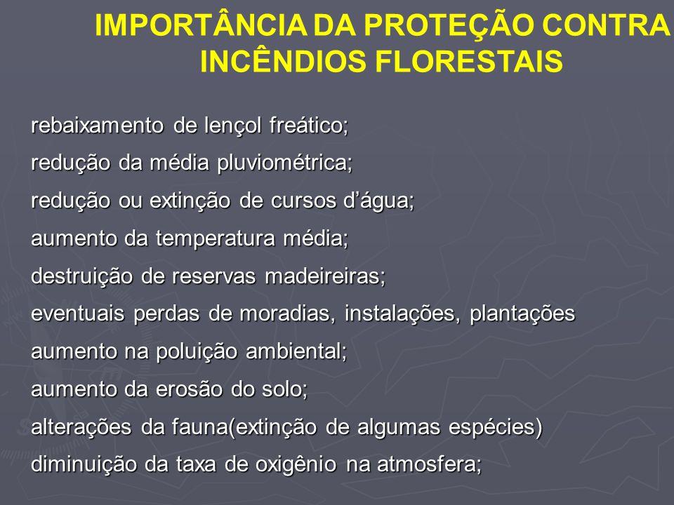 IMPORTÂNCIA DA PROTEÇÃO CONTRA INCÊNDIOS FLORESTAIS