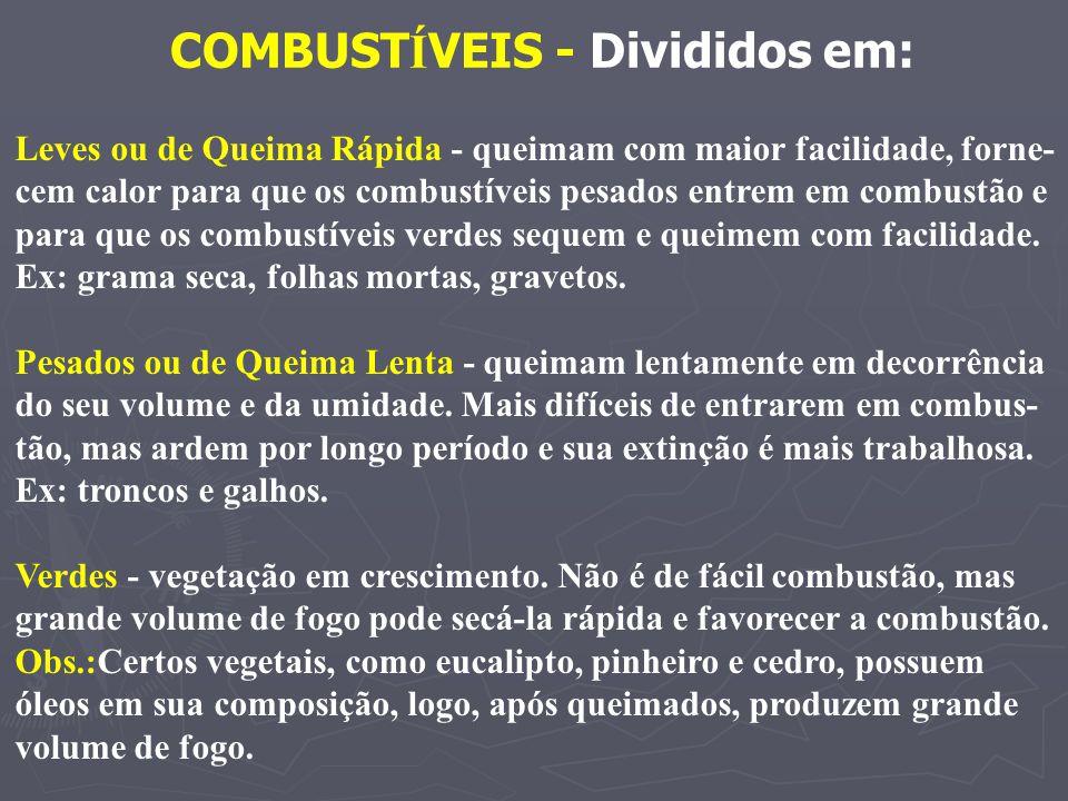 COMBUSTÍVEIS - Divididos em: