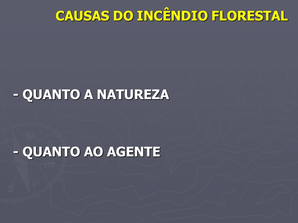 CAUSAS DO INCÊNDIO FLORESTAL