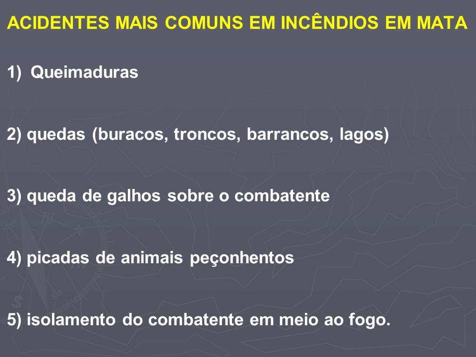 ACIDENTES MAIS COMUNS EM INCÊNDIOS EM MATA
