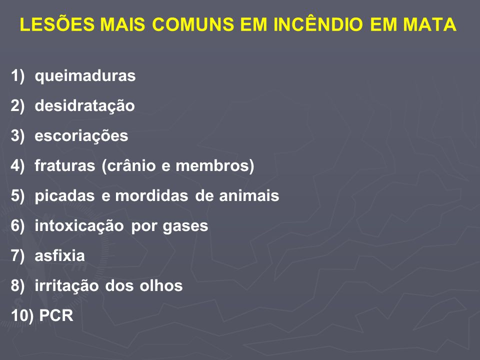 LESÕES MAIS COMUNS EM INCÊNDIO EM MATA