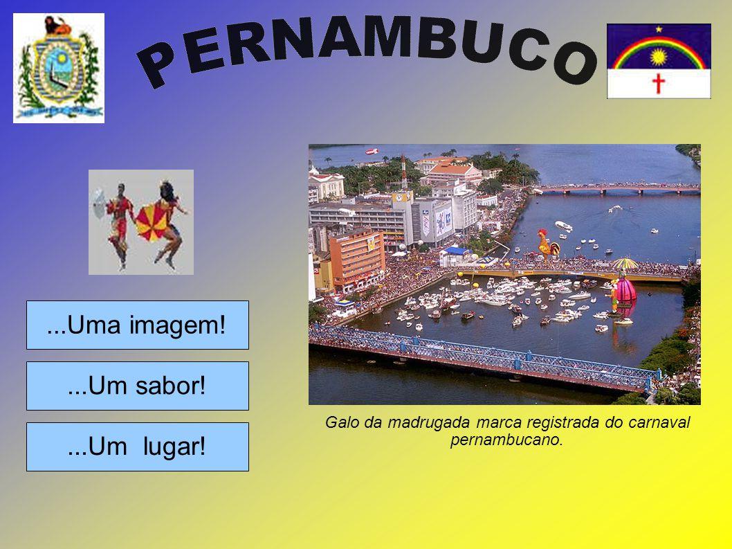 Galo da madrugada marca registrada do carnaval pernambucano.