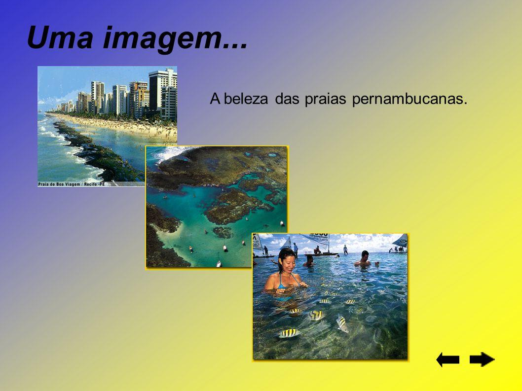 Uma imagem... A beleza das praias pernambucanas.