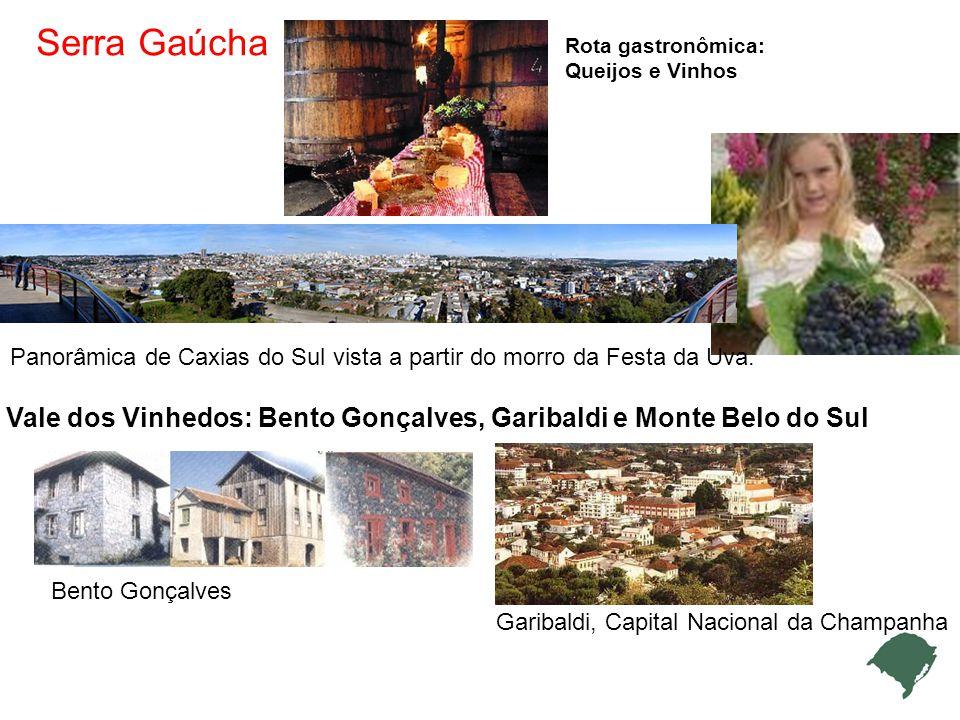 Panorâmica de Caxias do Sul vista a partir do morro da Festa da Uva.