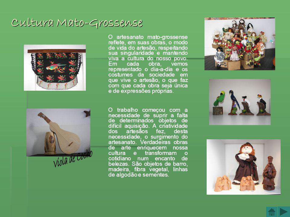 Viola de Cocho Cultura Mato-Grossense