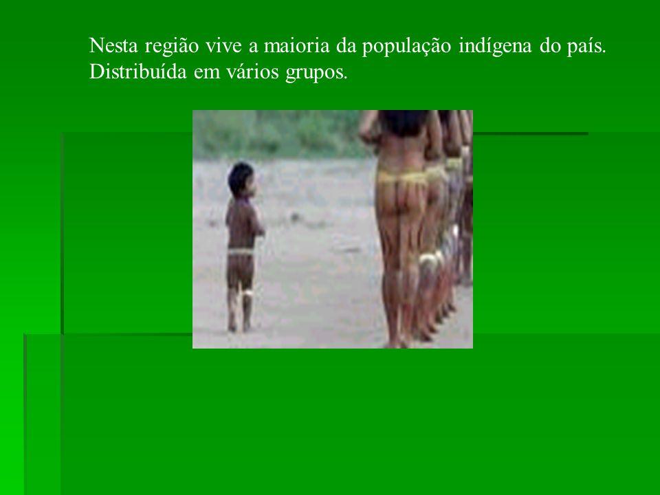 Nesta região vive a maioria da população indígena do país