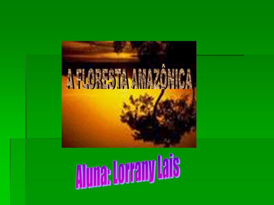 A FLORESTA AMAZÔNICA Aluna: Lorrany Lais