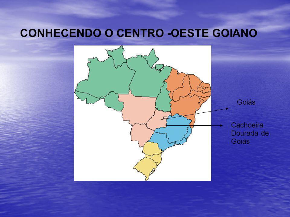 CONHECENDO O CENTRO -OESTE GOIANO
