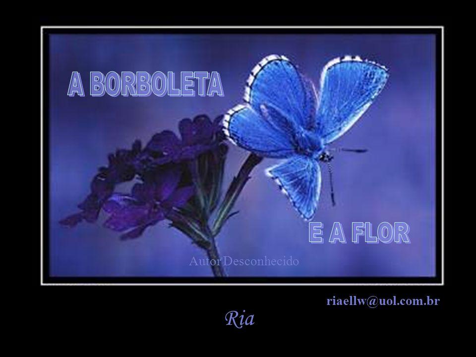 A BORBOLETA E A FLOR Autor Desconhecido riaellw@uol.com.br Ria