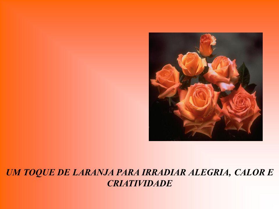 UM TOQUE DE LARANJA PARA IRRADIAR ALEGRIA, CALOR E CRIATIVIDADE