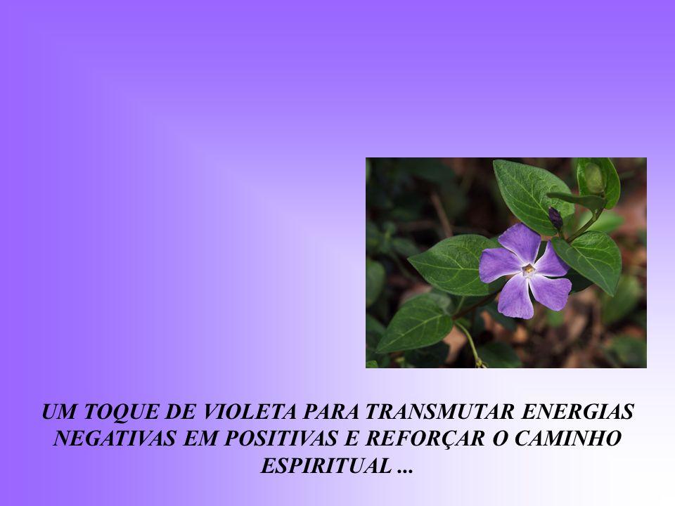 UM TOQUE DE VIOLETA PARA TRANSMUTAR ENERGIAS NEGATIVAS EM POSITIVAS E REFORÇAR O CAMINHO ESPIRITUAL ...