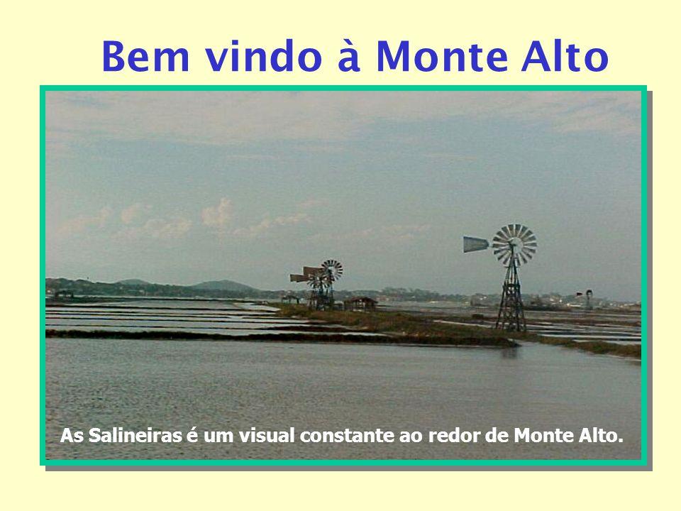 As Salineiras é um visual constante ao redor de Monte Alto.