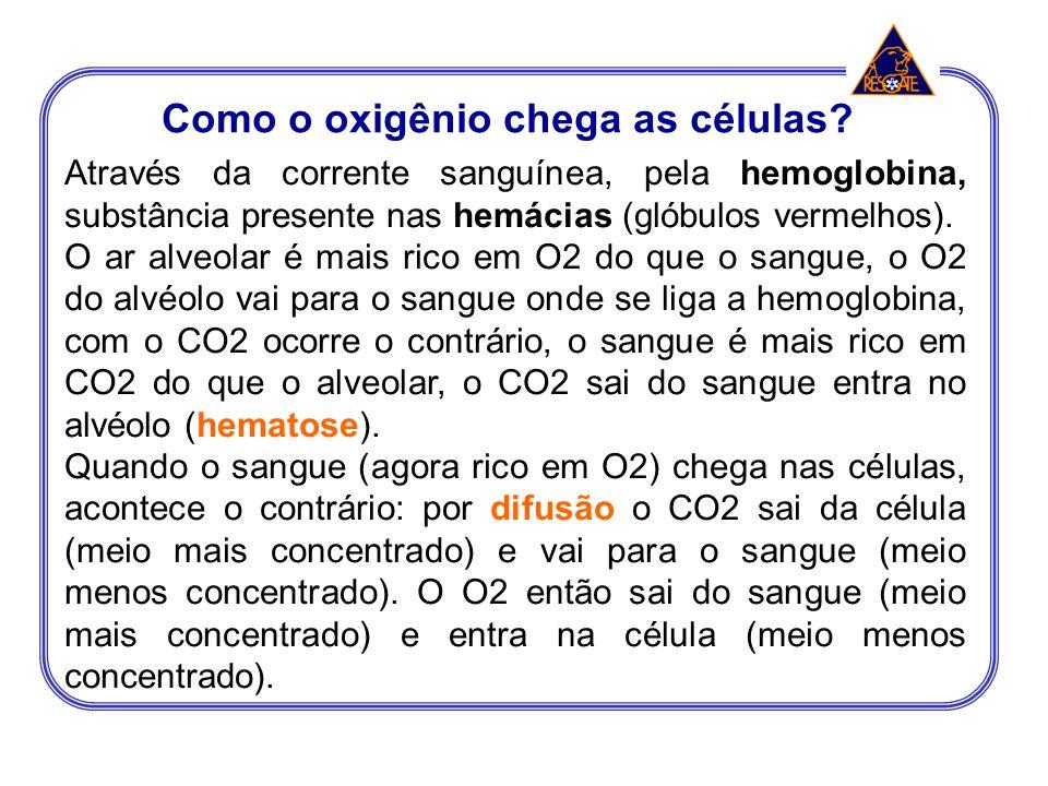 Como o oxigênio chega as células
