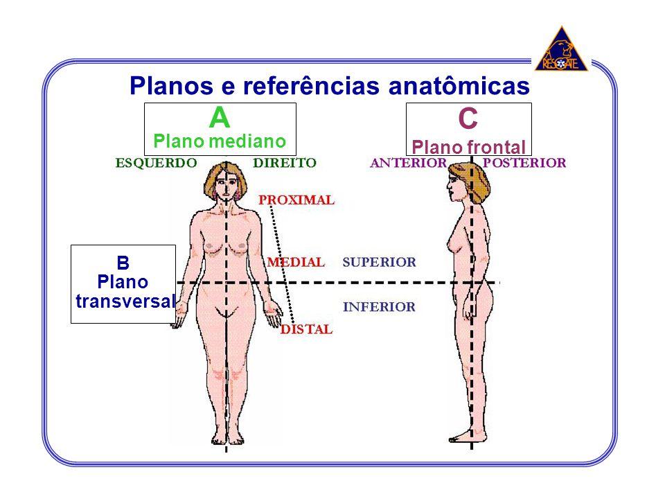 Planos e referências anatômicas