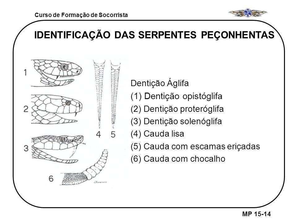 IDENTIFICAÇÃO DAS SERPENTES PEÇONHENTAS