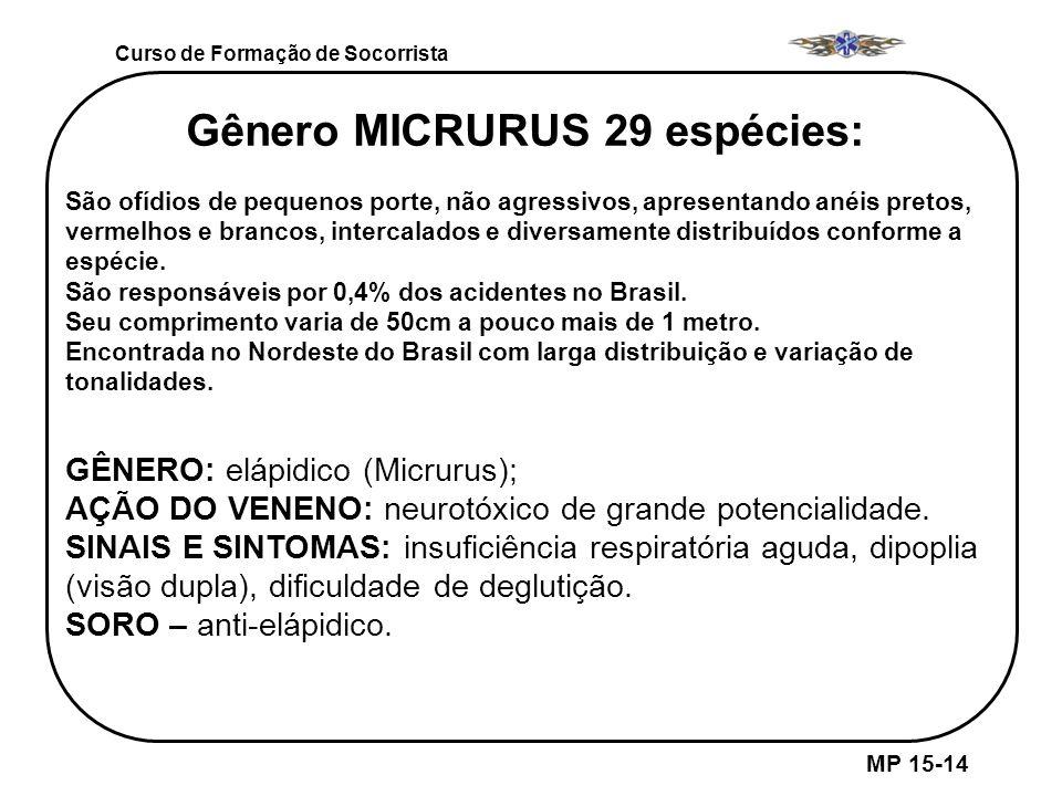 Gênero MICRURUS 29 espécies: