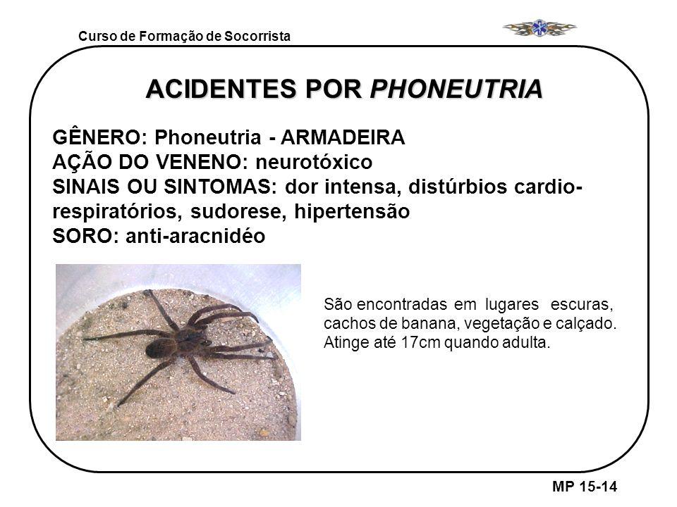ACIDENTES POR PHONEUTRIA