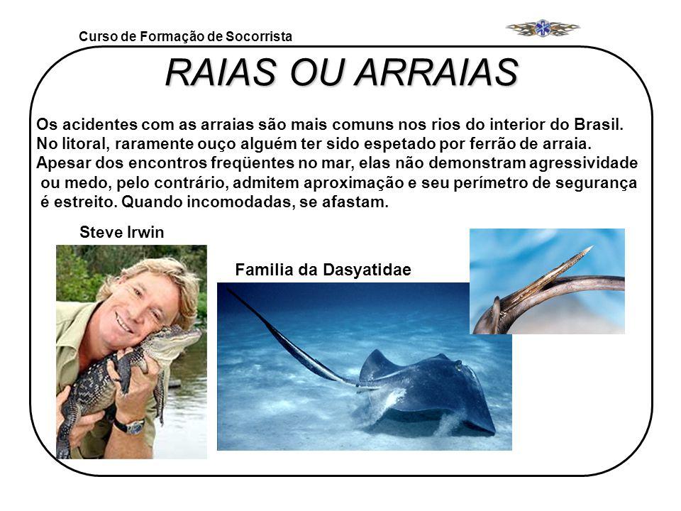 RAIAS OU ARRAIAS Familia da Dasyatidae