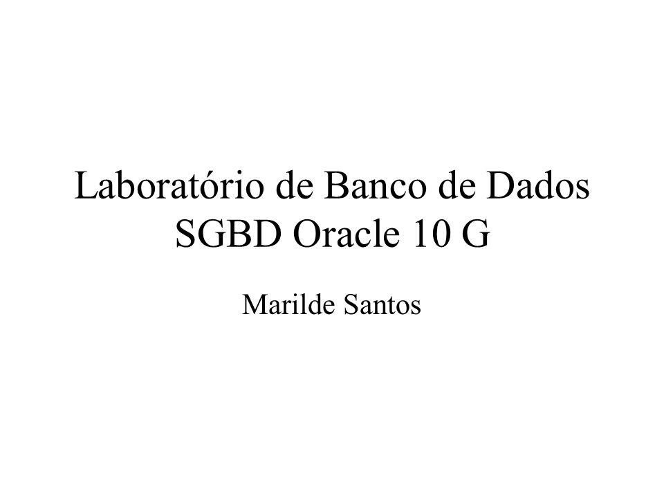 Laboratório de Banco de Dados SGBD Oracle 10 G