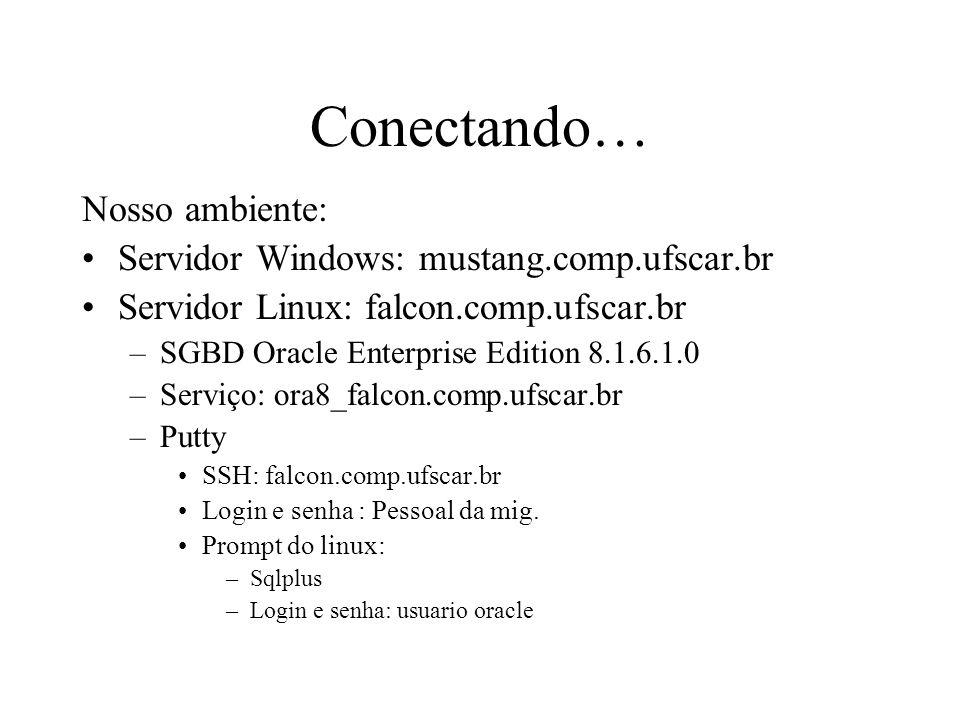 Conectando… Nosso ambiente: Servidor Windows: mustang.comp.ufscar.br