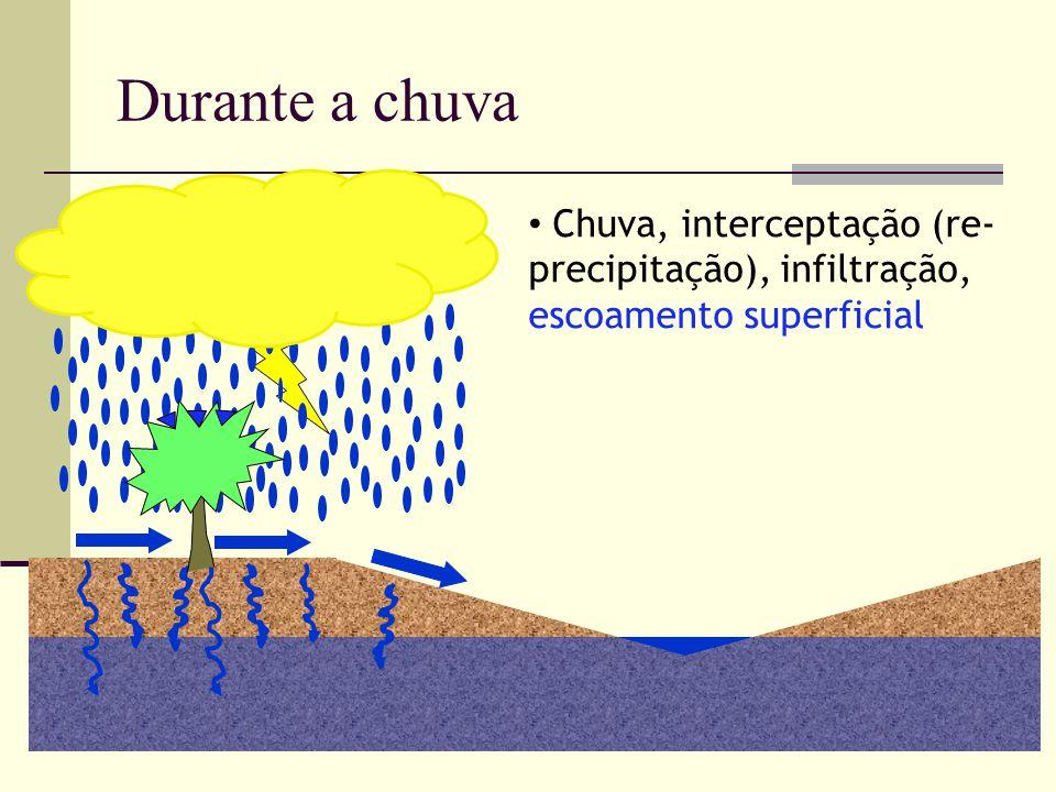 Durante a chuva Chuva, interceptação (re-precipitação), infiltração, escoamento superficial