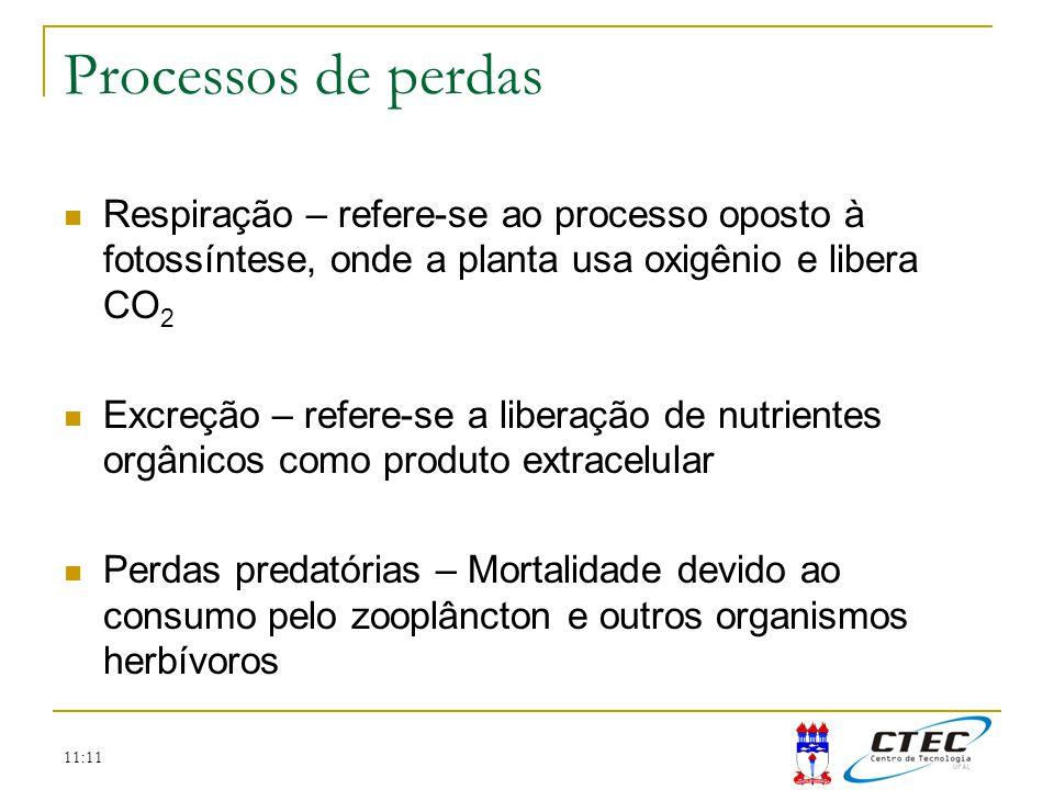 Processos de perdas Respiração – refere-se ao processo oposto à fotossíntese, onde a planta usa oxigênio e libera CO2.