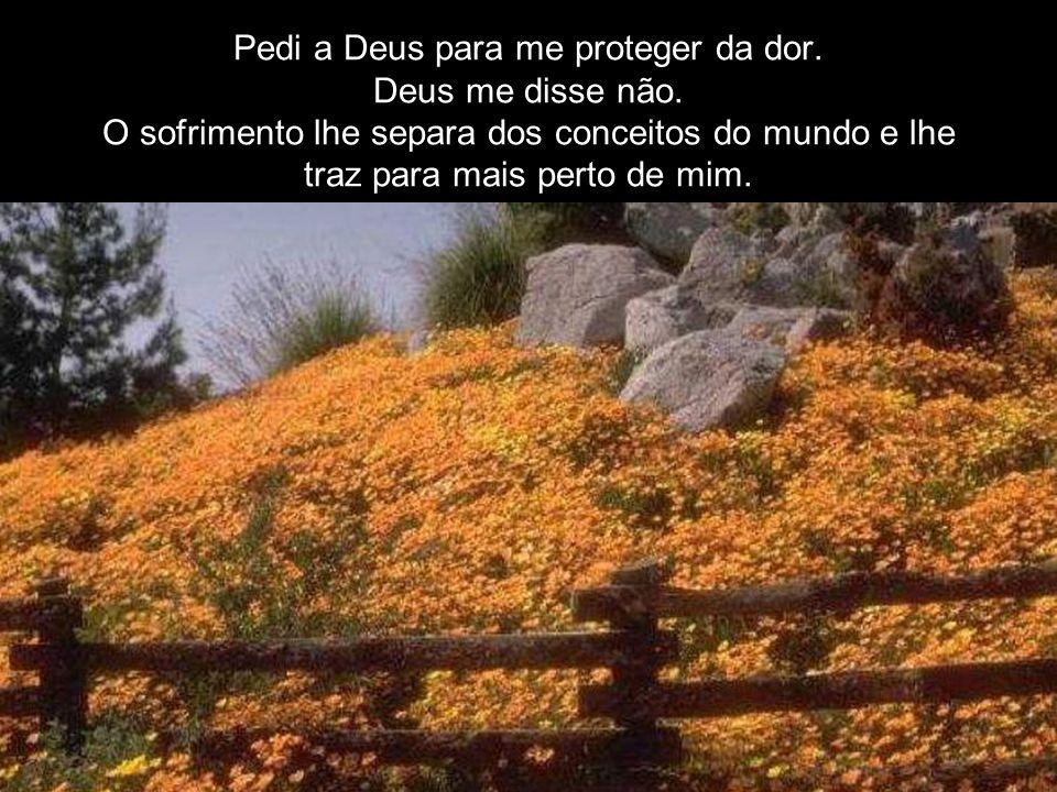 Pedi a Deus para me proteger da dor. Deus me disse não