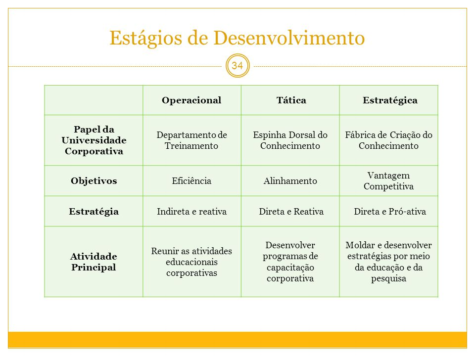 Estágios de Desenvolvimento