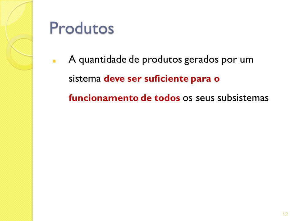 Produtos A quantidade de produtos gerados por um sistema deve ser suficiente para o funcionamento de todos os seus subsistemas.