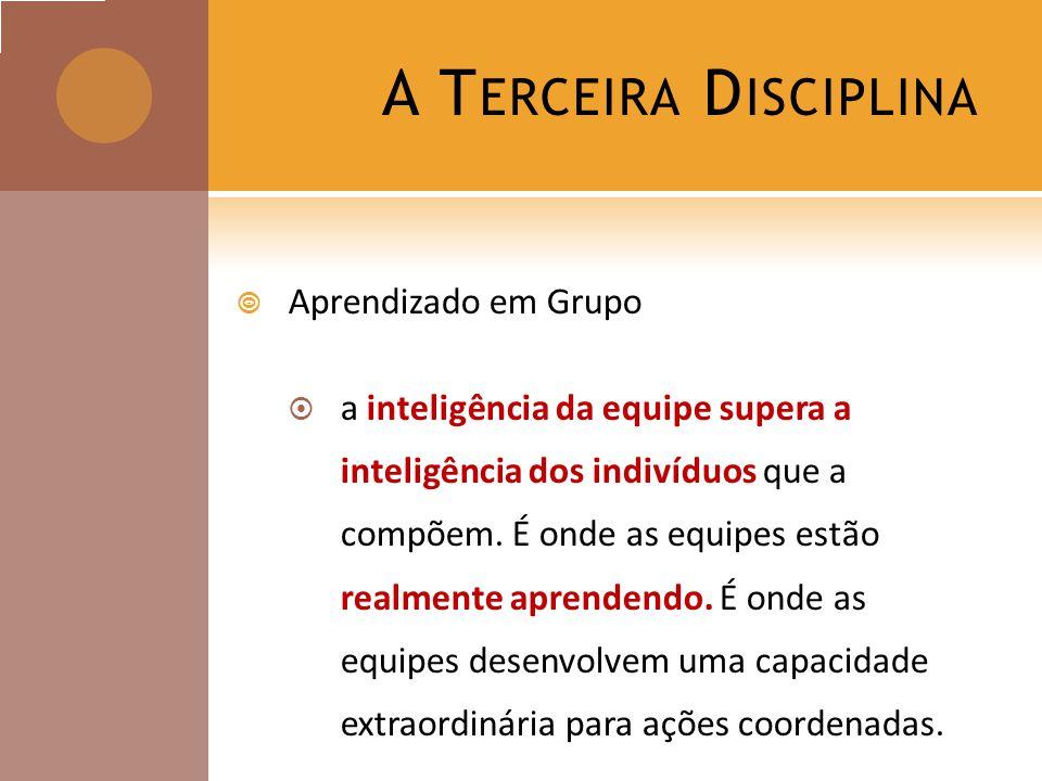 A Terceira Disciplina Aprendizado em Grupo
