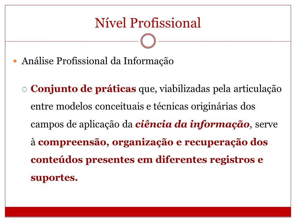 Nível Profissional Análise Profissional da Informação