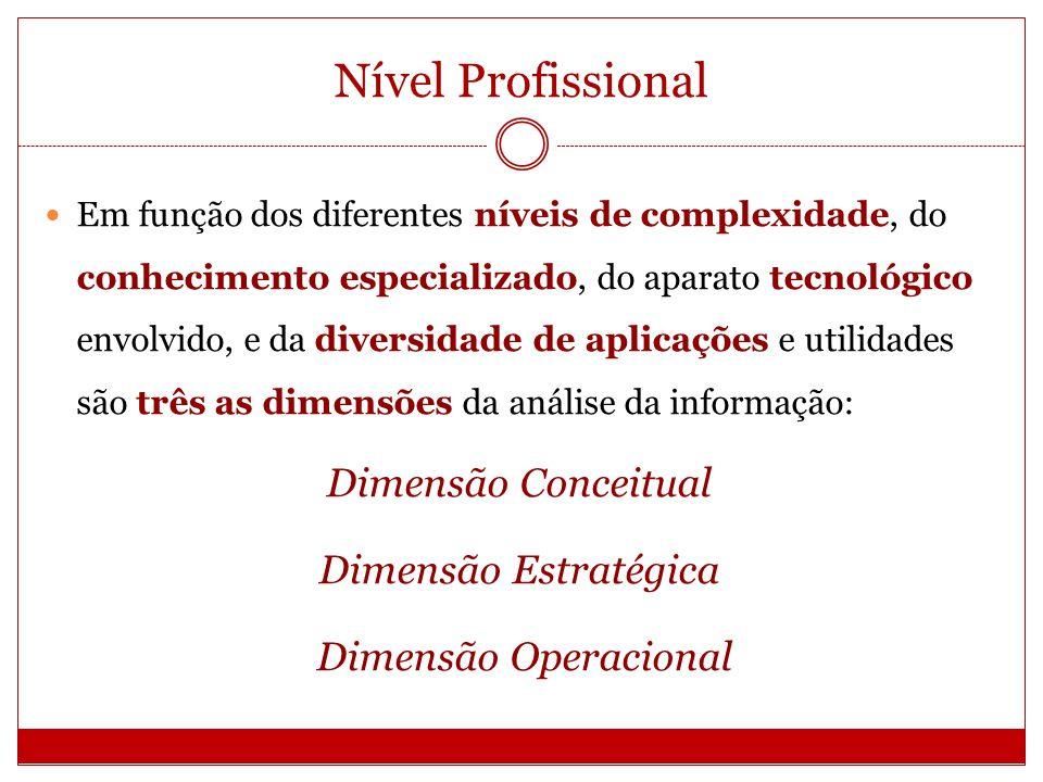 Nível Profissional Dimensão Conceitual Dimensão Estratégica