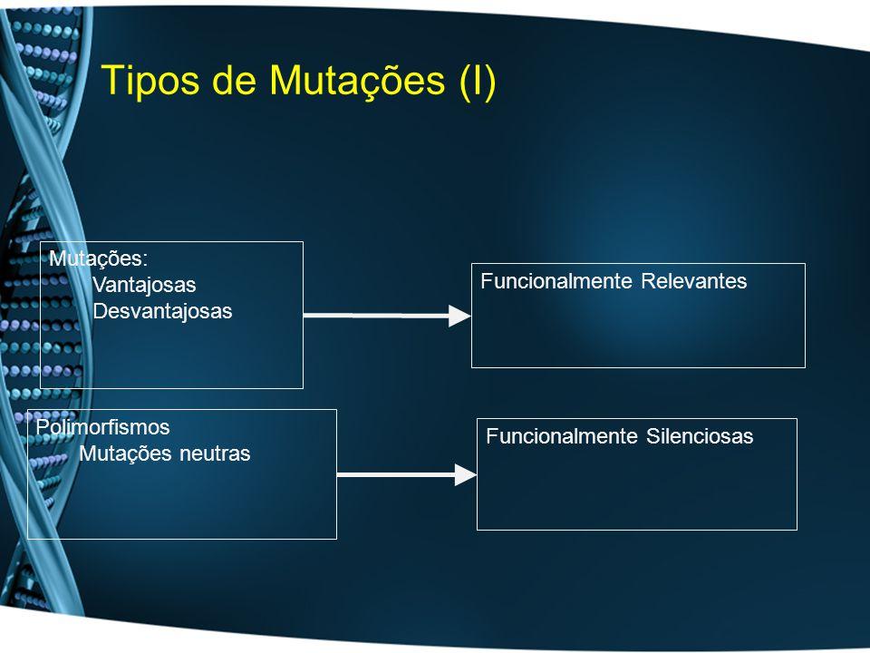 Tipos de Mutações (I) Mutações: Vantajosas Funcionalmente Relevantes