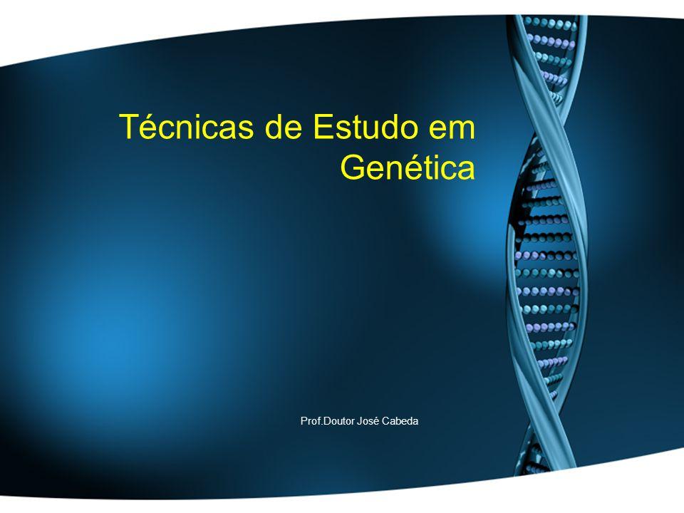 Técnicas de Estudo em Genética
