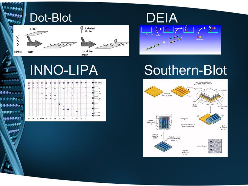 Dot-Blot DEIA INNO-LIPA Southern-Blot