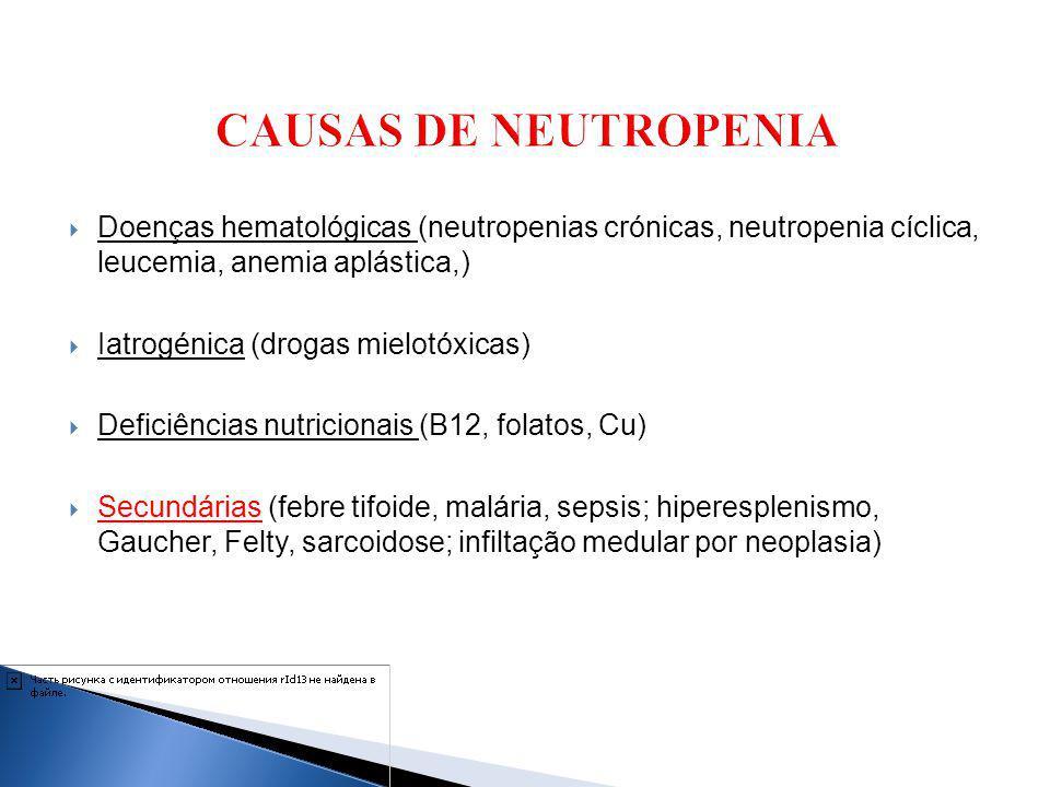 CAUSAS DE NEUTROPENIA Doenças hematológicas (neutropenias crónicas, neutropenia cíclica, leucemia, anemia aplástica,)