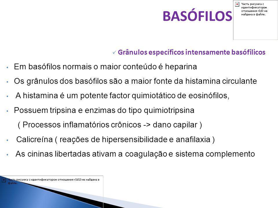 BASÓFILOS Em basófilos normais o maior conteúdo é heparina